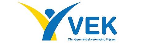 vek_logo_website